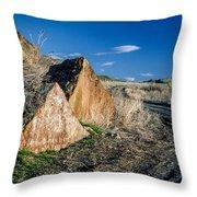 Oregon Trail 1 Throw Pillow