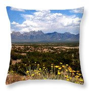 Organ Mountain Splendor Throw Pillow