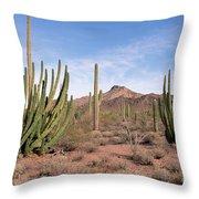 Organ Pipe Cactus Natl Monument Throw Pillow