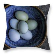 Organic Blue Eggs Throw Pillow
