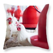Organic Chicken Coop  Throw Pillow