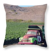 Organic Strawberries Throw Pillow
