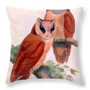 Oriental Bay Owl Throw Pillow
