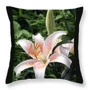 Oriental Hybrid Lily In White Peach And Pink  Throw Pillow
