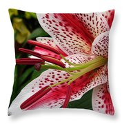 Oriental Hybrid Lily Named Dizzy Throw Pillow