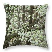 Oriental Pear Tree Throw Pillow