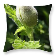 Oriental Poppybud Throw Pillow