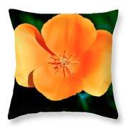 Original Digital Painting Of The California Poppy Throw Pillow
