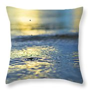 Origins Throw Pillow by Laura Fasulo
