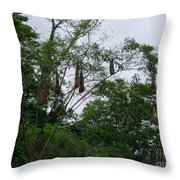 Oriole High Up In The Jungle Canopy Throw Pillow