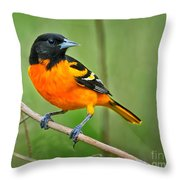 Oriole Perched Throw Pillow