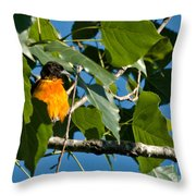 Oriole Watching Throw Pillow