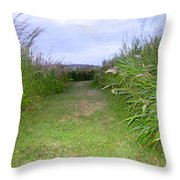 Orkney Night Throw Pillow