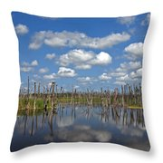 Orlando Wetlands Cloudscape 3 Throw Pillow