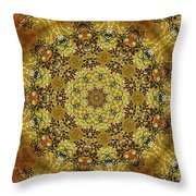 Ornamental 1 Version 2 Medallion Throw Pillow