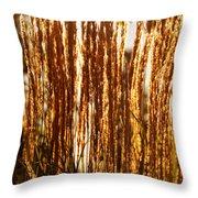 Ornamental Golden Grass Throw Pillow