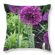 Ornamental Leek Flower Throw Pillow