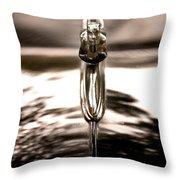 Ornamental Throw Pillow