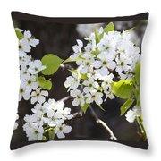 Ornamental Pear Blossoms No. 1 Throw Pillow