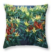 Ornamental Peppers...   # Throw Pillow