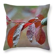 Ornamental Plum Tree Leaves With Raindrops Throw Pillow