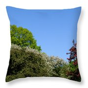 Ornamental Skyline Throw Pillow
