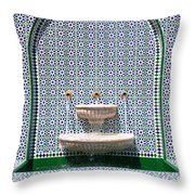 Ornate Fountain - Oman Throw Pillow