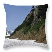 Orphaned Snow Field Throw Pillow