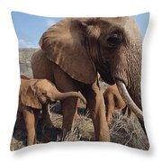 Orphans Malaika With Nyiro Tsavo Kenya Throw Pillow
