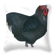 Orpington Rooster Throw Pillow
