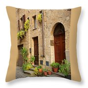 Orvieto Homes Throw Pillow