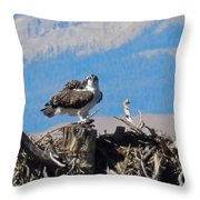 Osprey And Catch Throw Pillow
