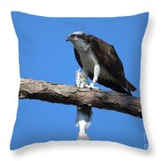 Osprey And Fish No.4  Throw Pillow