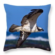 Osprey Bringing Home The Bacon Throw Pillow