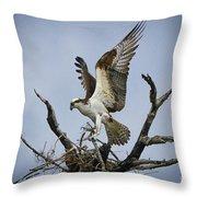 Osprey Building A New Nest Throw Pillow