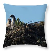 Osprey Chicks In Nest Throw Pillow