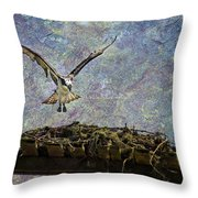 Osprey-coming Home Throw Pillow