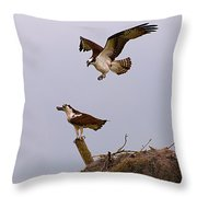 Osprey Coming In Throw Pillow