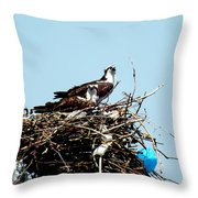 Osprey Couple Throw Pillow