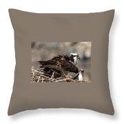 Osprey Family Huddle Throw Pillow by John Daly