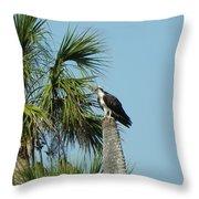 Osprey Heaven Throw Pillow