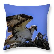 Osprey In The Nest Throw Pillow