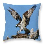 Osprey Mating Throw Pillow