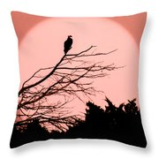 Osprey Moon Throw Pillow