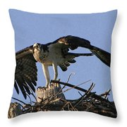 Osprey Warning Throw Pillow