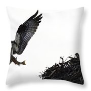 Osprey With Sushi Throw Pillow