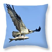 Osprey With Mullet Throw Pillow