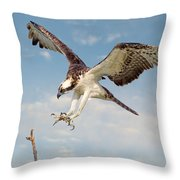 Osprey With Talons Extended Throw Pillow