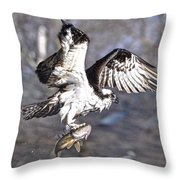 Osprey With Walleye Fish Throw Pillow