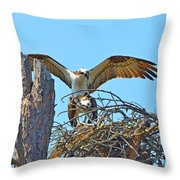 Ospreys Copulating In New Nest2 Throw Pillow